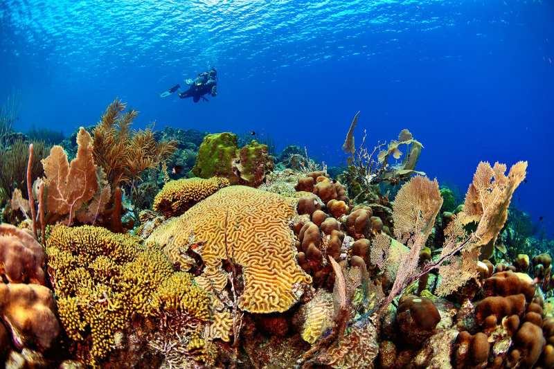 Fotoexplorer-Marcio-Cabral-HOL-Bonaire-016