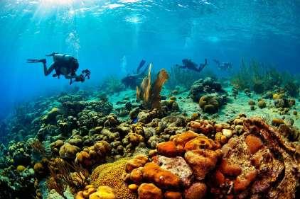 Fotoexplorer-Marcio-Cabral-HOL-Bonaire-018