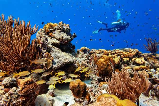 Fotoexplorer-Marcio-Cabral-HOL-Bonaire-022