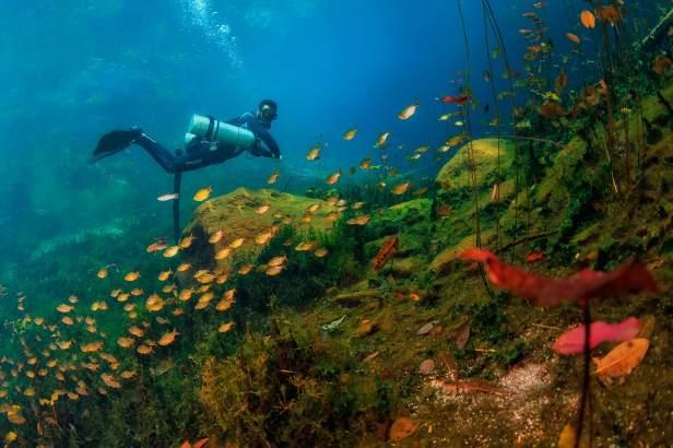 fotoexplorer_marcio_cabral_cenotes_mexicanos_02