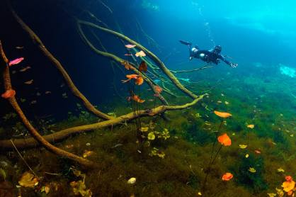 fotoexplorer_marcio_cabral_cenotes_mexicanos_07