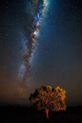 fotoexplorer_marcio_cabral_pantanal_07
