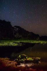 fotoexplorer_marcio_cabral_pantanal_27