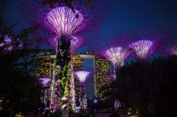 Singapur - Super Trees