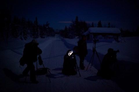 Jung-Lappland