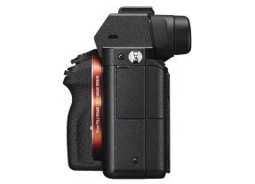 Sony A7 II + 24-70mm F/4.0 ZA OSS ZEISS-4278