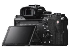 Sony A7 II + 24-70mm F/4.0 ZA OSS ZEISS-4276