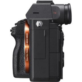 Sony A7 mark III + 24-70mm F/2.8 GM-5683