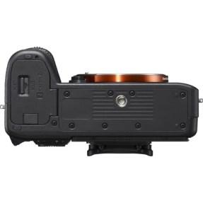 Sony A7 mark III + 24-70mm F/2.8 GM-5682