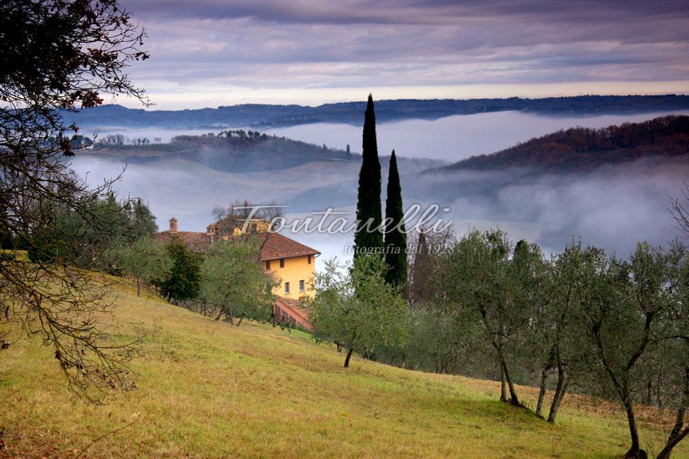 Foto casa toscana con nebbia e cipressi  Foto Fontanelli