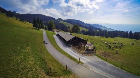 Alp Kohlwald - Rieden - St. Gallen