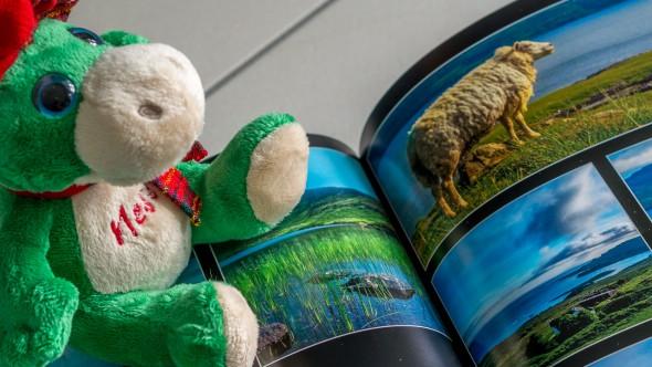 Schottland pur - Nessie und schottisches Schaf