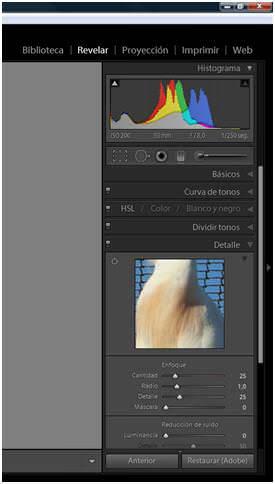 Módulo Revelar Adobe Lightroom