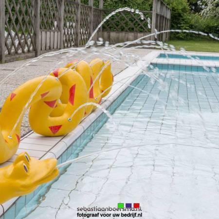 Zwembad fotograaf