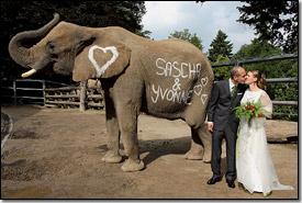 heiraten im zoo  Fotograf Wuppertal