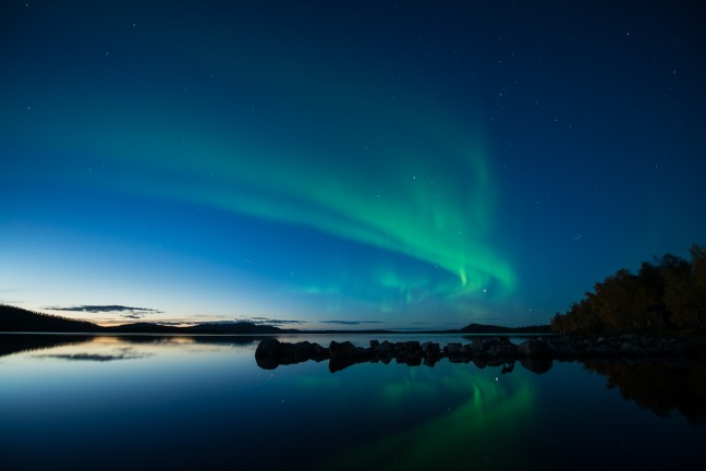 Northern lights over lake Inari, Finland, during twilight. A fox is standing on the rocks, which is clearly visible in the reflection of the water.