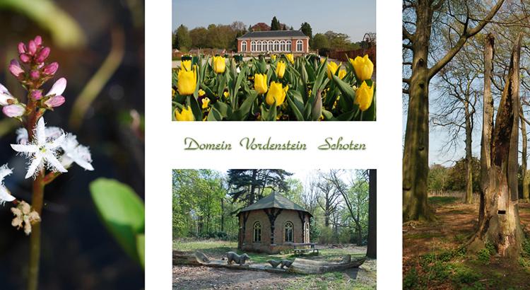 Park Vordenstein