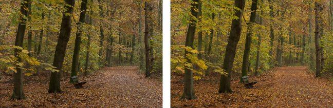 kleuren versterken met polarisatiefilter
