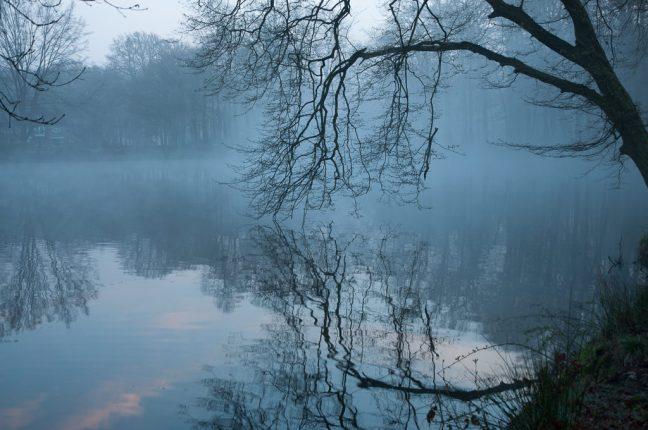 Landgoed Biljoen in de mist