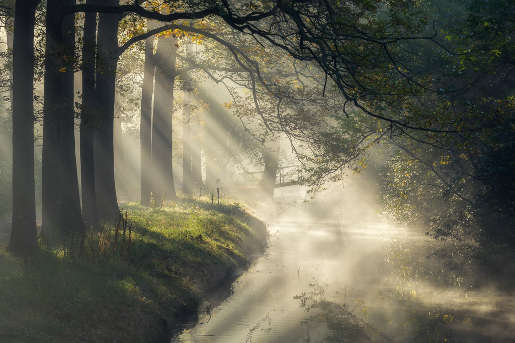 Een sprookjesachtige ochtend bij Landgoed de Horsten