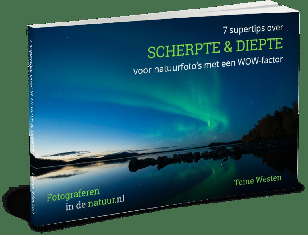 E-book_7-supertips-over-Scherpte-en-Diepte-voor-natuurfoto's-met-een-wow-factor