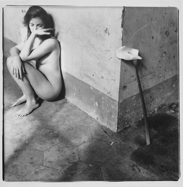 O suicídio da fotógrafa Francesca Woodman, segundo Arthur Danto - Fotografia DG