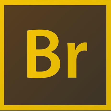 Adobe bridge curso