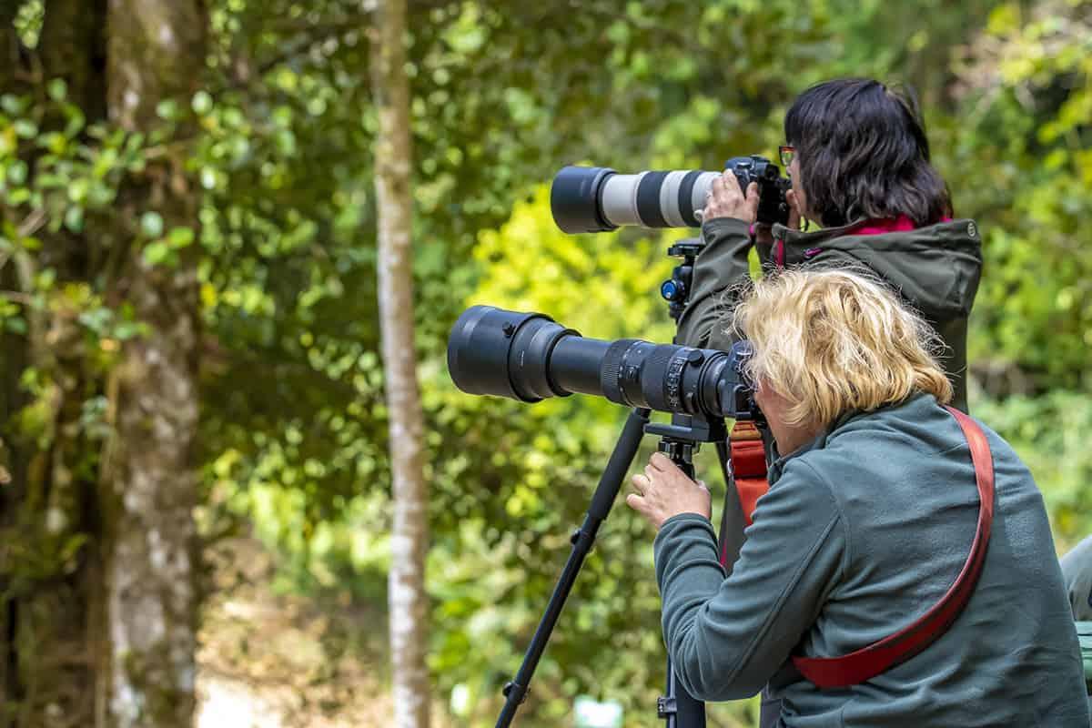 Fotoreis Costa Rica - Ineke en Anke