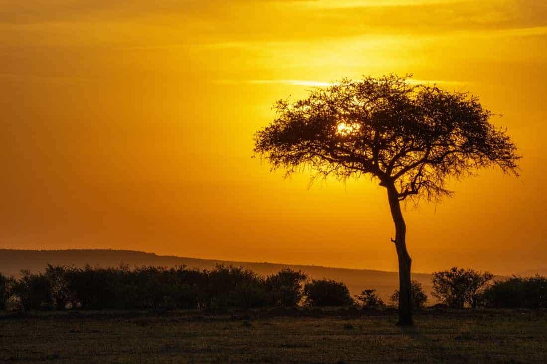 Maasai Mara Kenia rondreis zonsopkomst