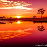 zonsondergang-Hatertse-Vennen | Fotografie Arthur van Leeuwen
