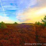 landschapsfotografie-Veluwe