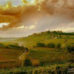 toscane, italie | Fotografie Arthur van Leeuwen