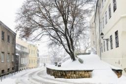 Ilirski trg during a snowstorm, Zagreb, Croatia.