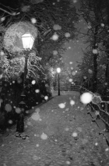 ZG_snijeg_011