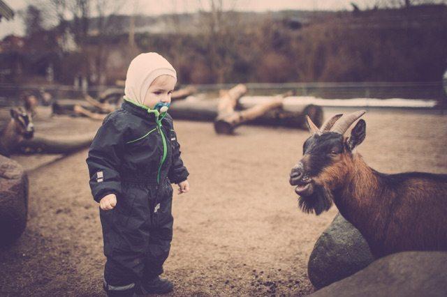 børnefoto_udendørs4