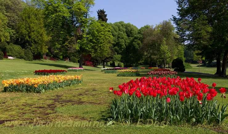 Verona parco giardino Sigurtà