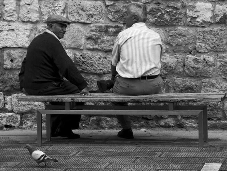 I vecchietti e il piccione