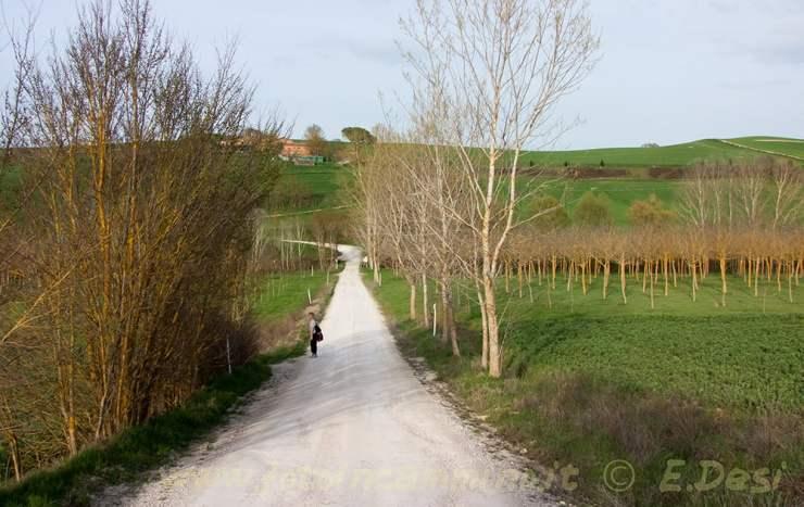 Crete Senesi Corsano