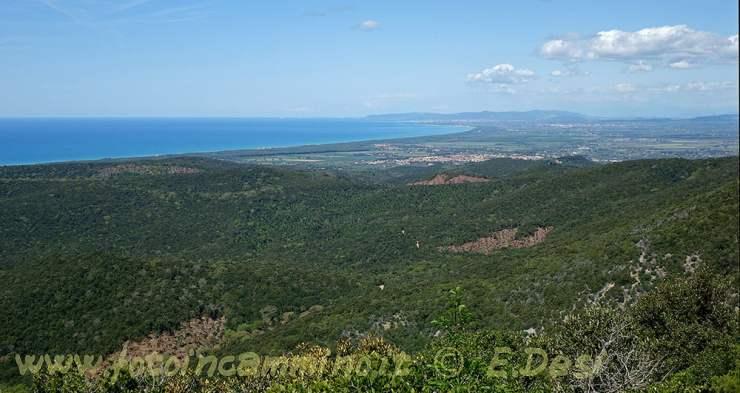 Monte Calvi
