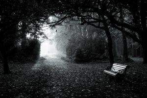 En tidlig høstmorgen i Herbert Park i Dublin. Stemningen er akkurat passe dyster i det person kommer gående «gjennom» lyset og på vei mot kamera.