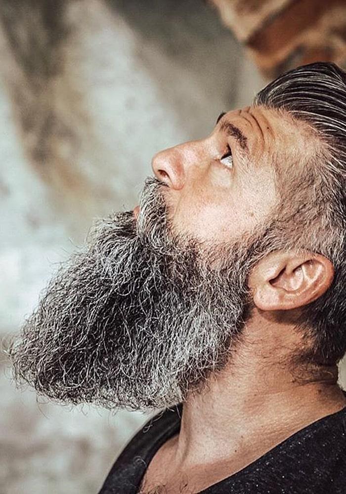 форма бороды полная седая