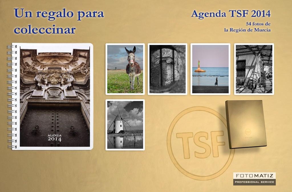 Agenda 2014 TSF