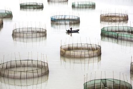 Tugo Cheng (Hong Kong) - 1st place - Landscapes