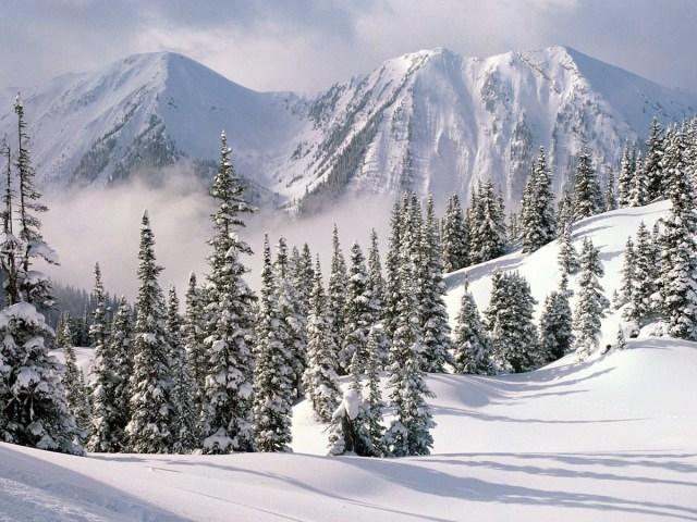 Kar Manzarası Fotoğrafları