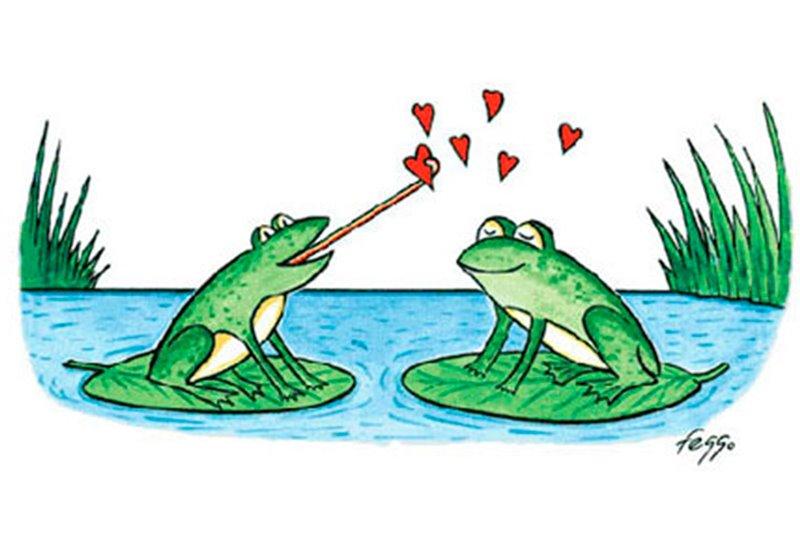 Husband Wife Funny Quotes Wallpaper Fotos De Amor Em Desenho Para Ver E Compartilhar Fotos