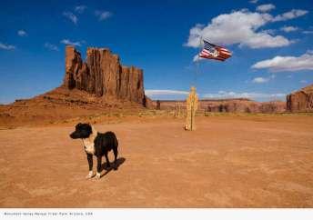 travel-viaje-siqui-fotografia-monument-valley-perro