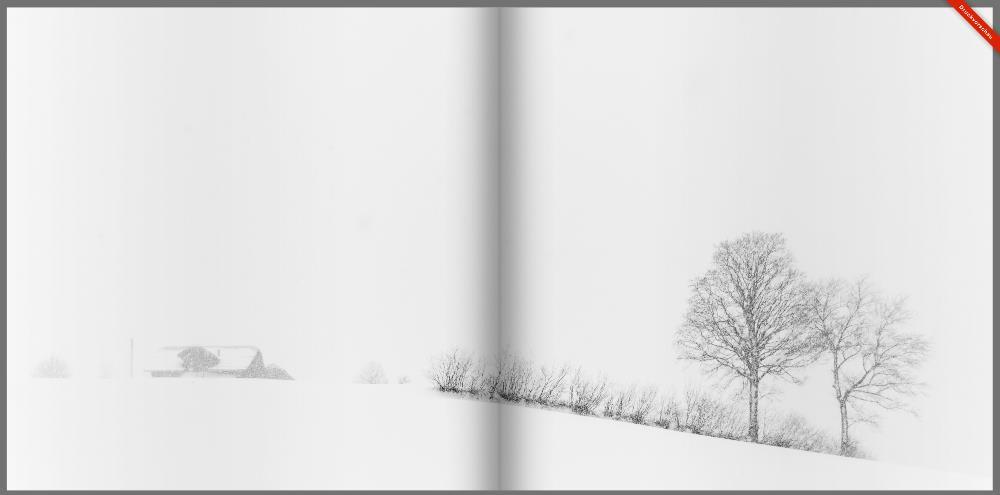 Seiten 19 und 20