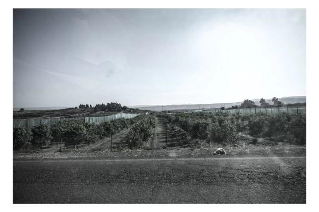 DSCF9043 749x500 - [Glass Reflection Series] - [in auto verso casa] - fotostreet.it