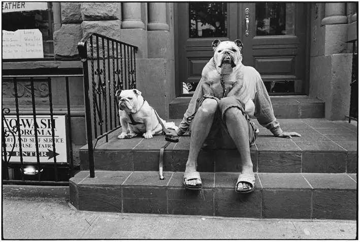 Elliott Erwitt  NYC15335 USA  New York City  2000  copyright Elliott Erwitt Contrasto - GIUSTAPPORRE IN STREET PHOTOGRAPHY - fotostreet.it