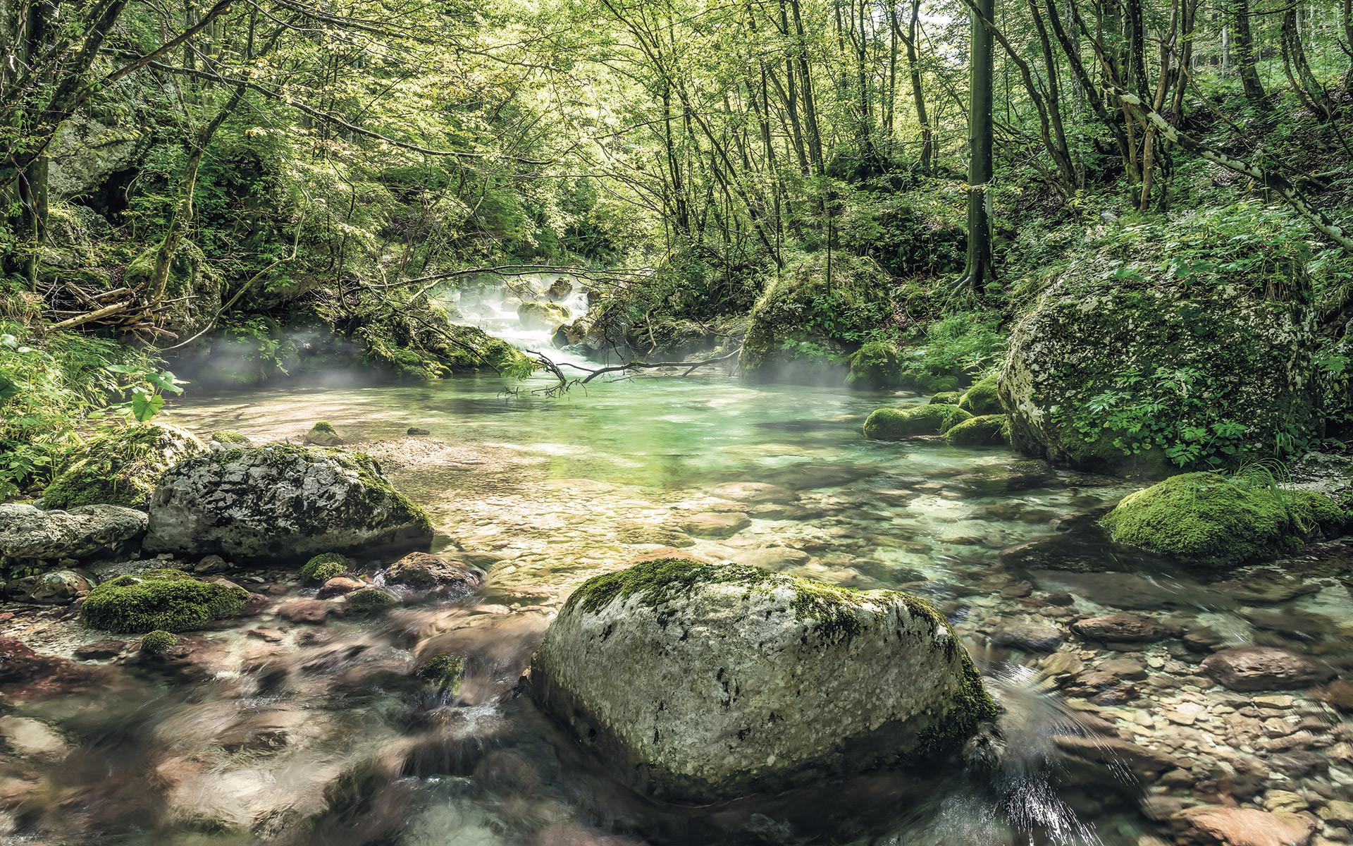 Fototapete auf Vlies Tranquil Pool von Stefan Hefele  fototapetede